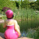 Een afbeelding van een vijver ter illustratie van mijn blog over de zwemvijver