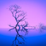Een afbeelding van een boom die 'inspiratie' illustreert